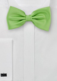 Bow ties  -  Solid apple green men's bow tie