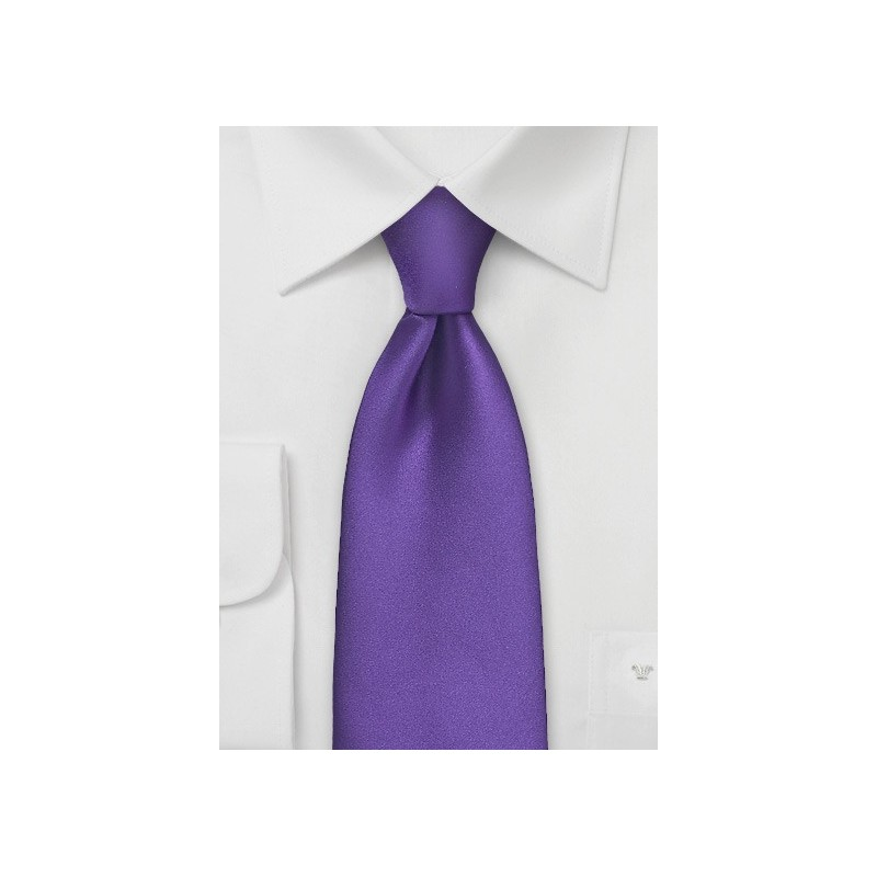 Regency Purple Tie in Extra Long