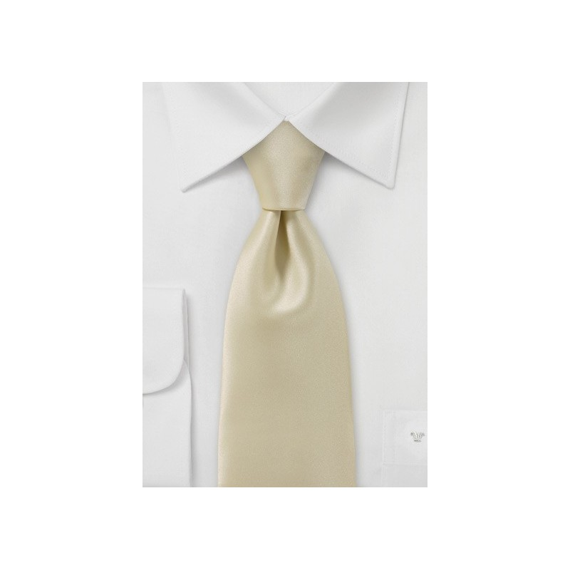 Solid Hued Tie in Champagne
