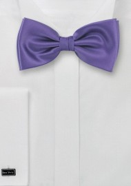 Rich Lilac Colored Bow Tie