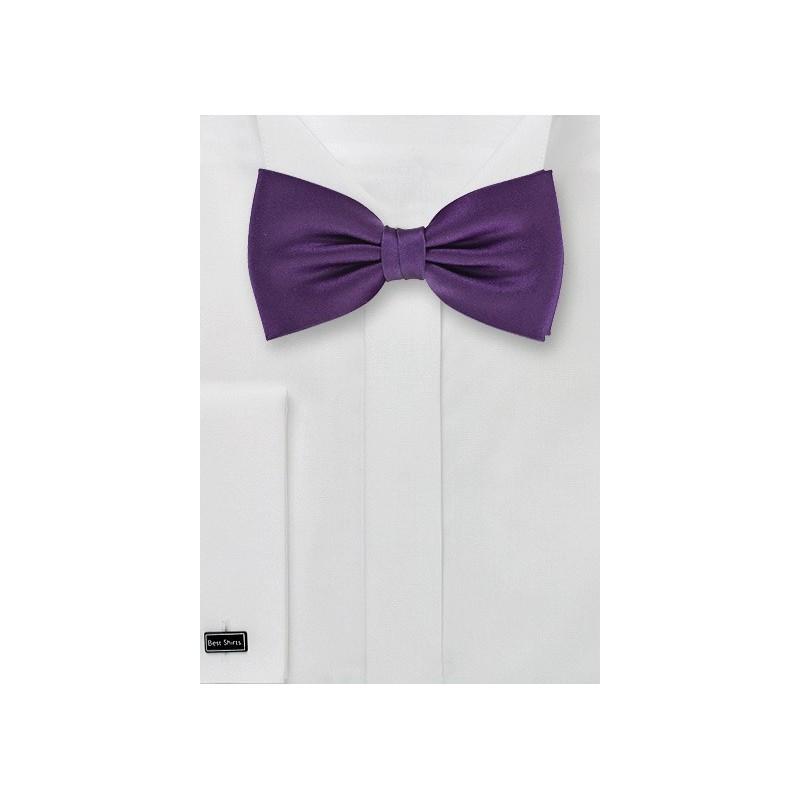 Classic Purple Bow Tie