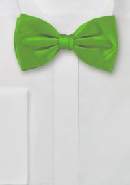Bright Green Pre-Tied Bow Tie
