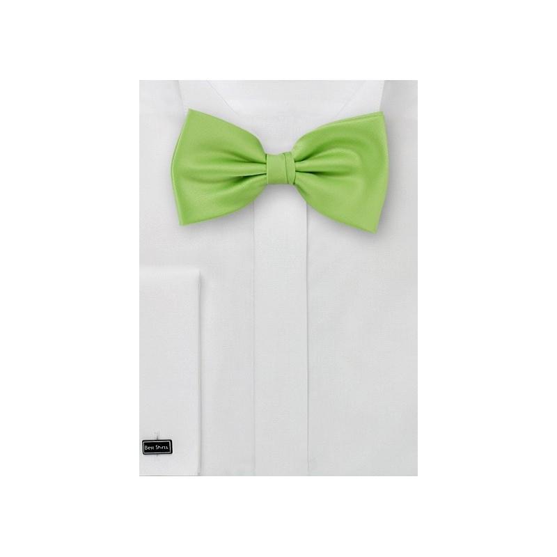Pure Silk Pre-Tied Bowtie in Light Green