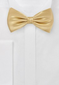 Vintage Gold Bow Tie