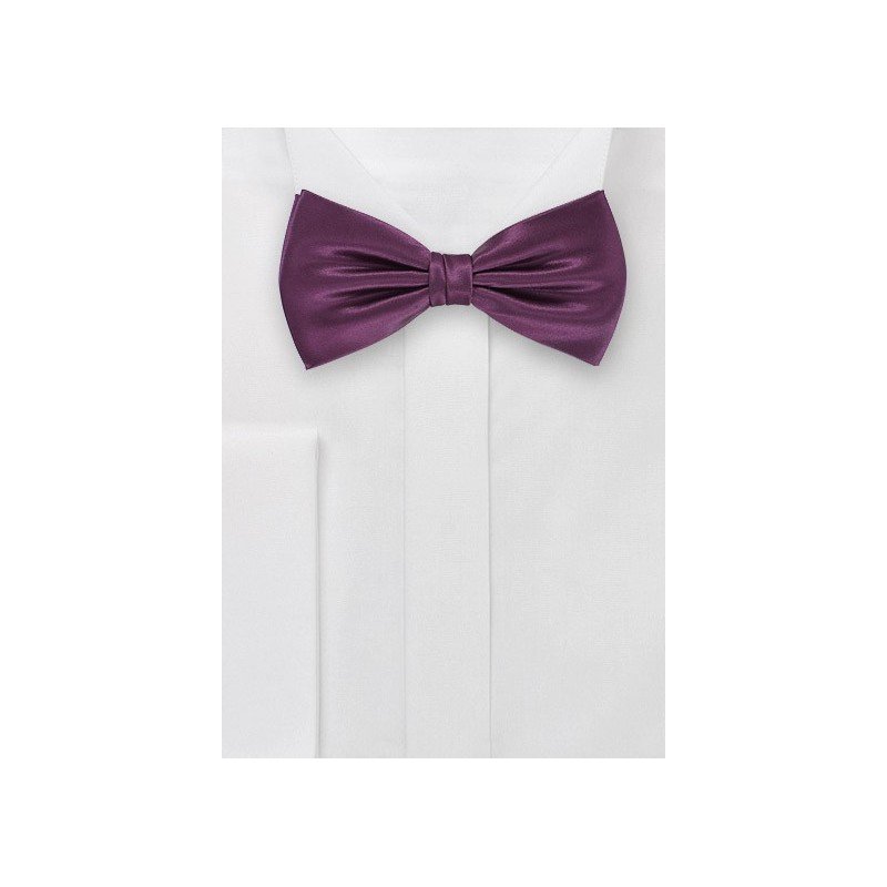Spiced Wine Bow Tie