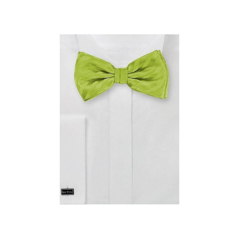 Apple Green Striped Bow Tie