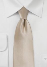 Champagne Hued Neck Tie
