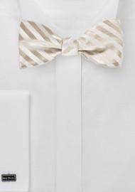 Elegant Self Tie Bow Tie in Ivory