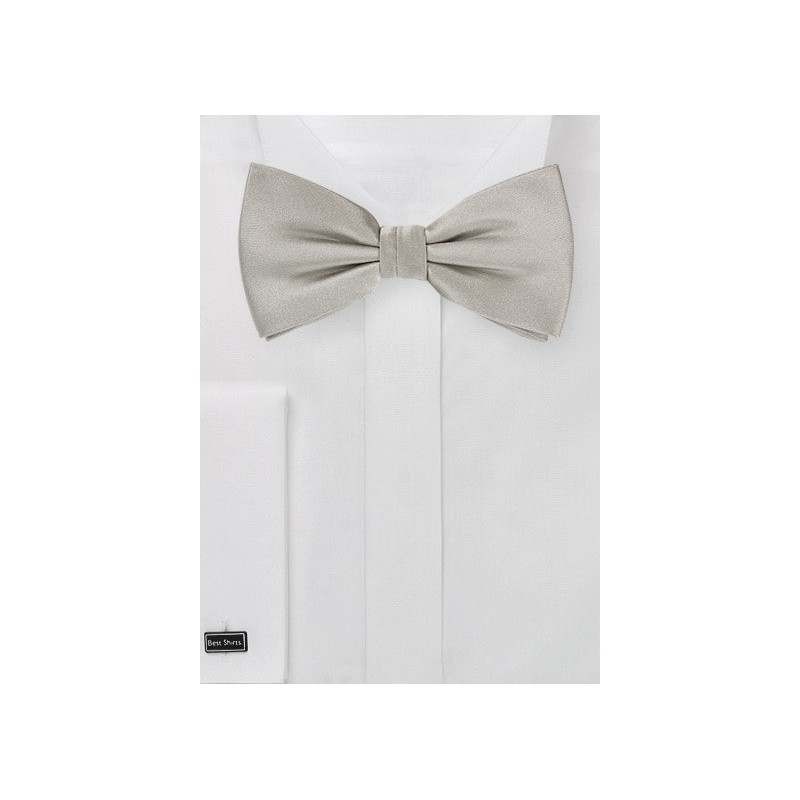 Satin Finish Silver Bow Tie