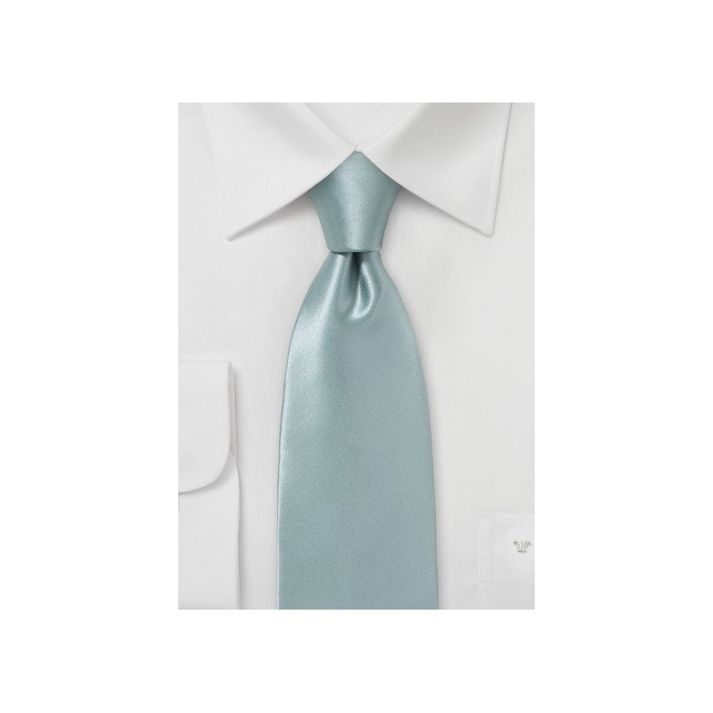Elegant Silver Silk Tie for Men