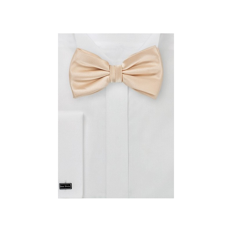Mens Bow Tie in Antique Blush