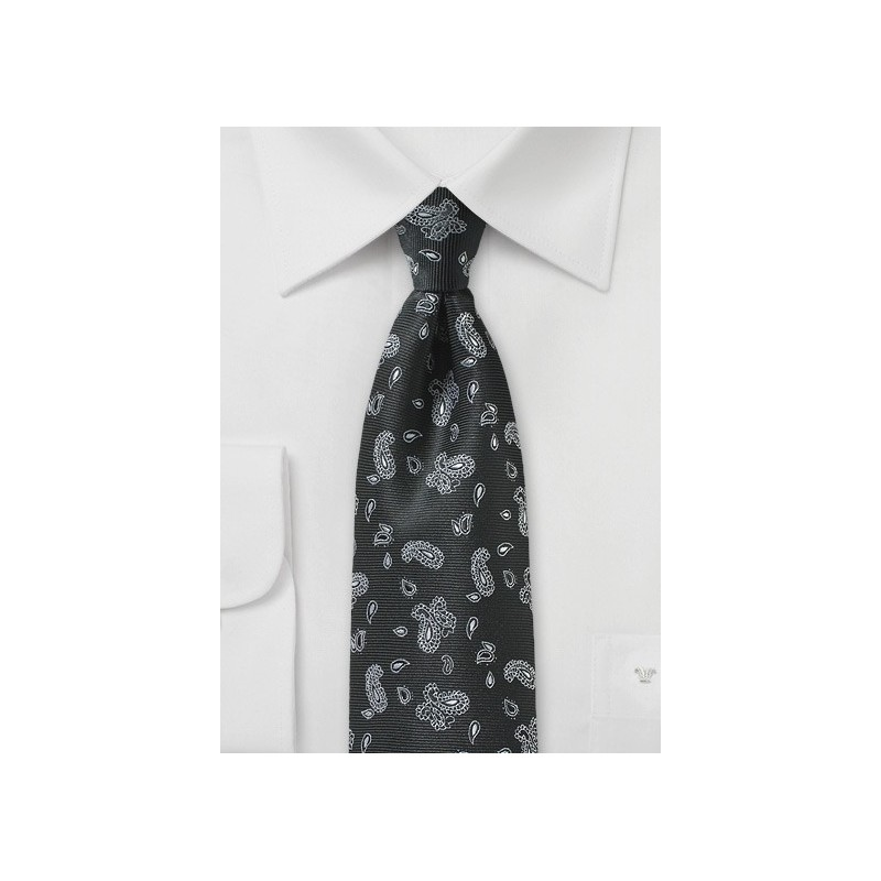 Black Tie with Silver Woven Paisleys