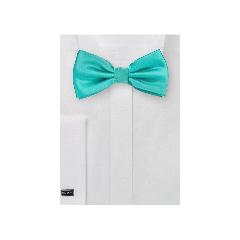 Bow Tie in Bright Mint