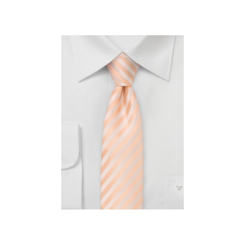 Striped Skinny Tie in Peach