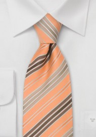 Striped Neck Tie in...