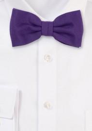 Matte Fabric Bowtie in Grape