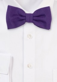 Matte Fabric Bowtie in Grape