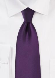 Solid Color Tie in Eggplant