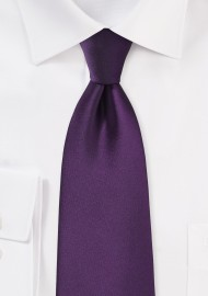 Solid Eggplant Purple Tie in XL