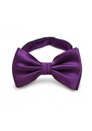 Bright Purple Bow Tie in Solid Color