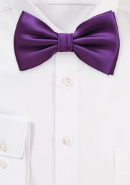 Bright Purple Bow Tie in Solid Color