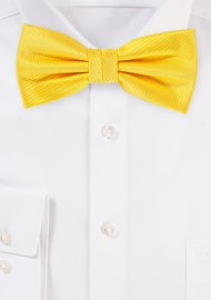 Formal Bow Tie in Daffodil