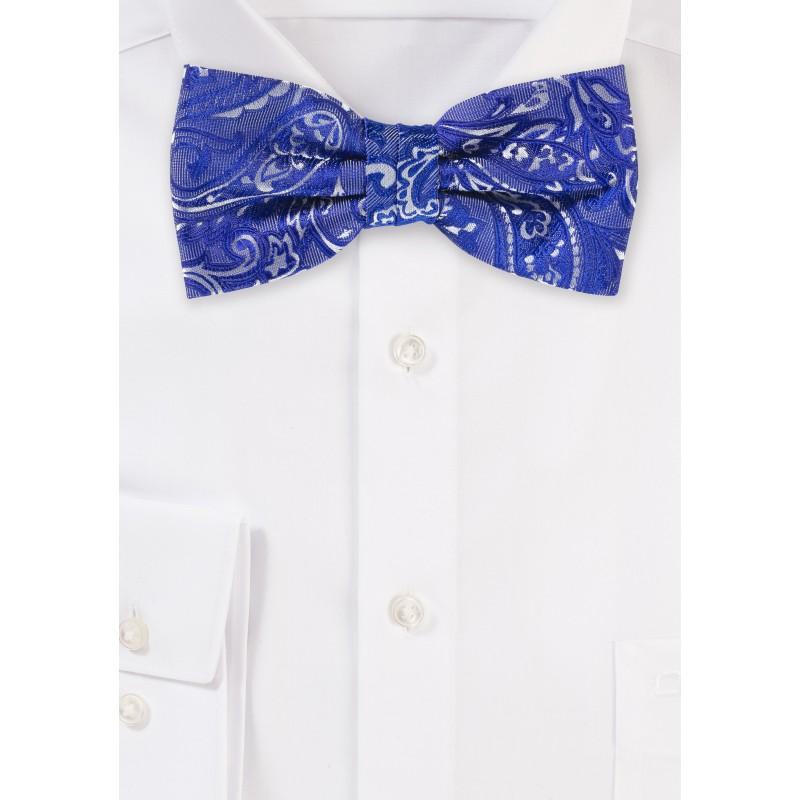 Morning Glory Blue Paisley Bow Tie
