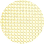 Pastel_Yellow