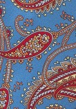 paisley-tie-large-scale
