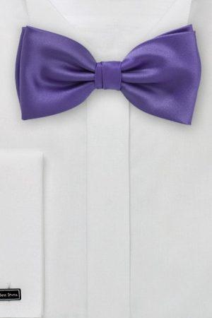 Ultra Violet Mens Bow Tie