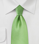 Solid Colored Men's Tie in Spring Green