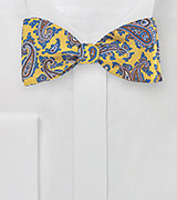 Yellow and Blue Paisley Bow Tie