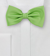 Bow ties   Solid apple green men's bow tie