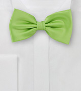 Pure Silk Pre-Tied Bowtie in Light Green