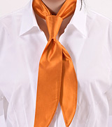 Pumpkin Orange Womens Neck Tie