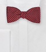 Trendy Bowtie with Narrow Stripes in Crimson