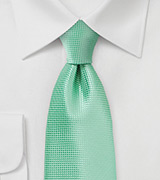 Winter Mint Color Tie in XL Length